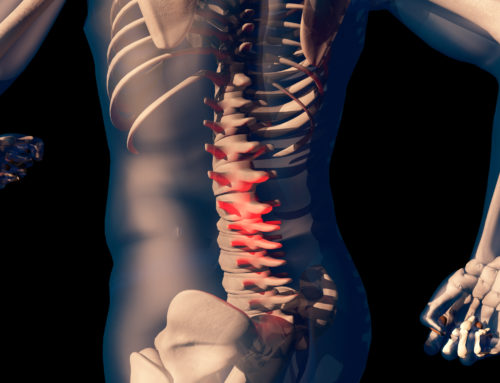Chiropractic Adjustment vs Spinal Decompression